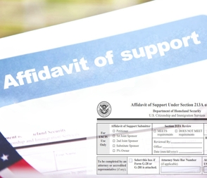 Affidavit of support web